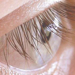 eyelash-perm-img